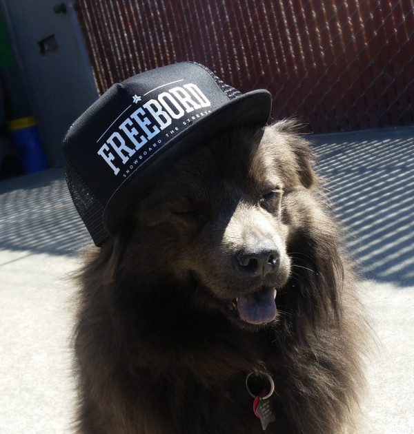 Freebord shop Trucker Hat cap Black dog